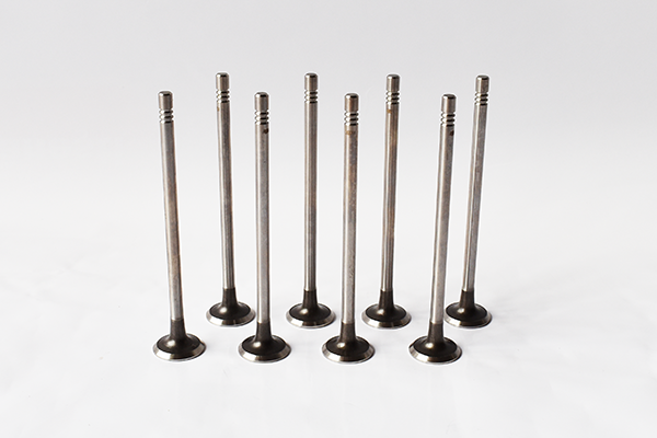 EXHAUST VALVES